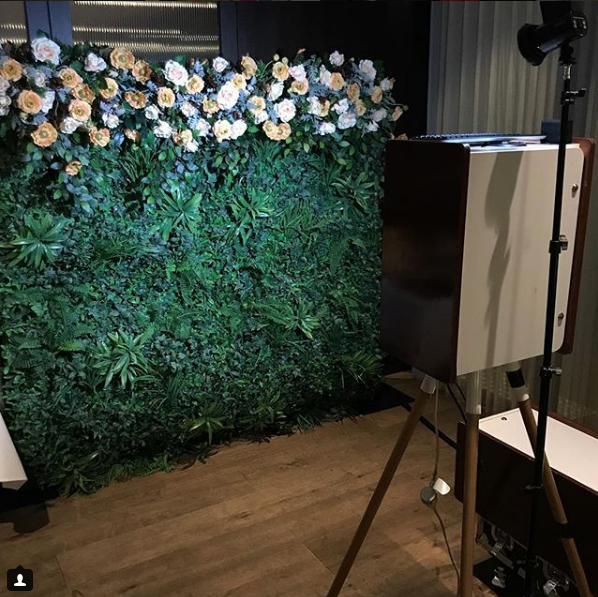 Greenery with Apricot and White Flower Wall