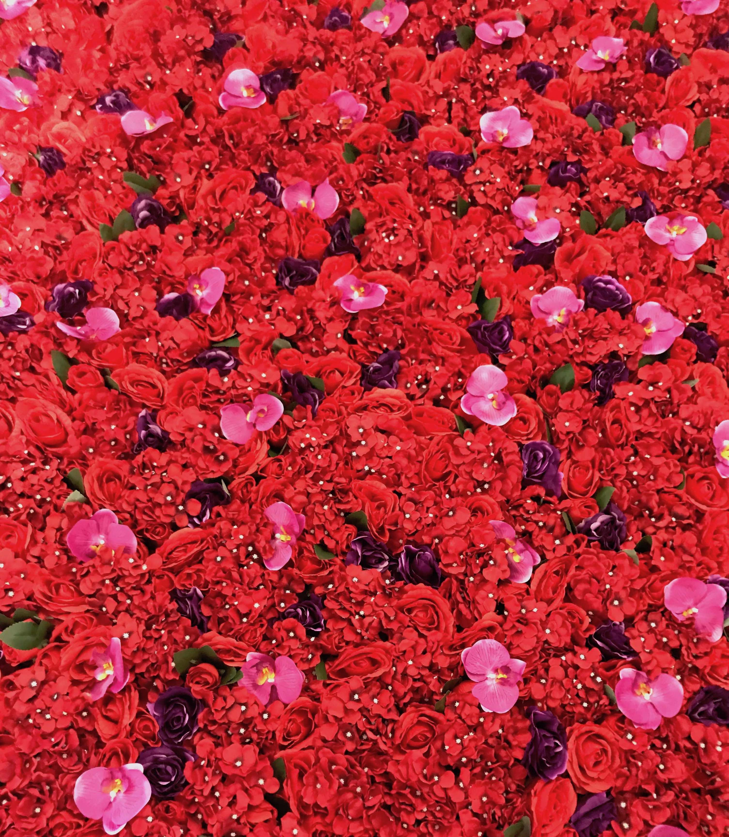 Red and Purple Flower Wall
