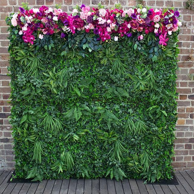 With Passion Flower Wall